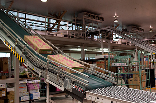 販売経路|福岡県花卉農業協同組合の「福岡花市場」「北九州花市場」