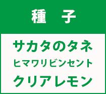 サカタ紹介